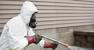 شركة رش مبيدات بالدمام والخبر